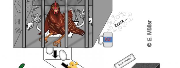 Fleischversicherung unten