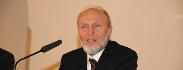 Hans-Werner Sinn 2013